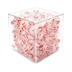 Acrylic Large Candy Container